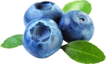 Blueberry Infused Balsamic Vinegar