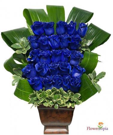 Bluemination  Blue Roses Bouquet