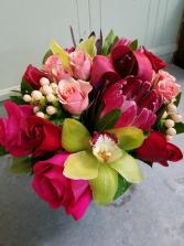 Blush of Romance Roses