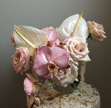 Blush Phalaenopsis Vase Arrangement