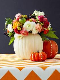 Boho Pumpkin Spice