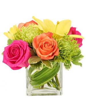 Bold and Beautiful Vase Arrangement in Springfield, MO | FLOWERAMA #226