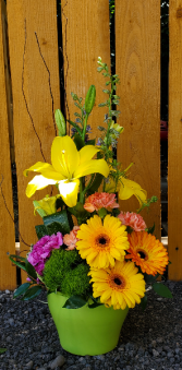 Bold and Bright ceramic container with gerbs and lilies