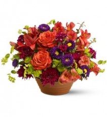 F100 - Bold Delight Arrangement