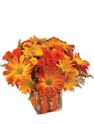Bonfire Nights Bouquet in Newport, ME | Blooming Barn Florist Gifts & Home Decor
