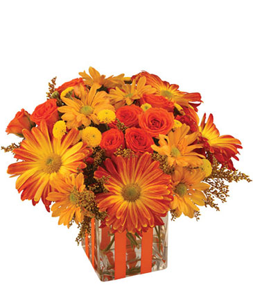 Bonfire nights bouquet in hot springs ar the arrangement bonfire nights bouquet mightylinksfo