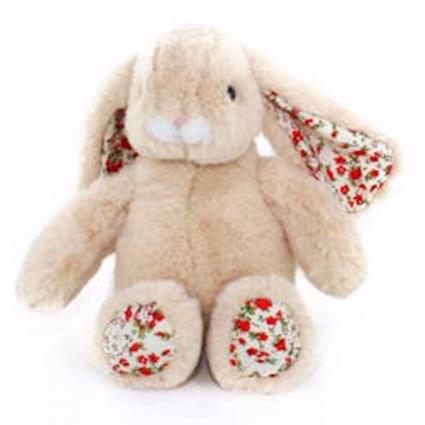 Bonnie the Long Eared Bunny
