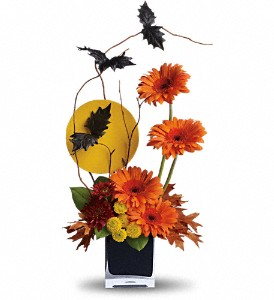 Boo-tiful BatsT177-1A Halloween in Fort Worth, TX | DAVIS FLORAL DESIGNS