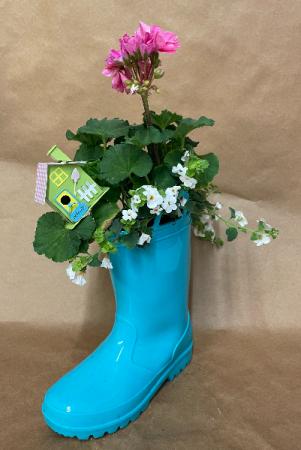 Boot Garden Plant