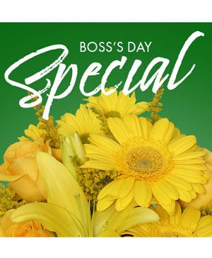 Boss's Day Special Designer's Choice in Orlando, FL | Progress Flowers