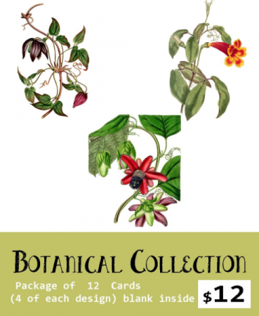 Botanical Card Set  William Curtis Set