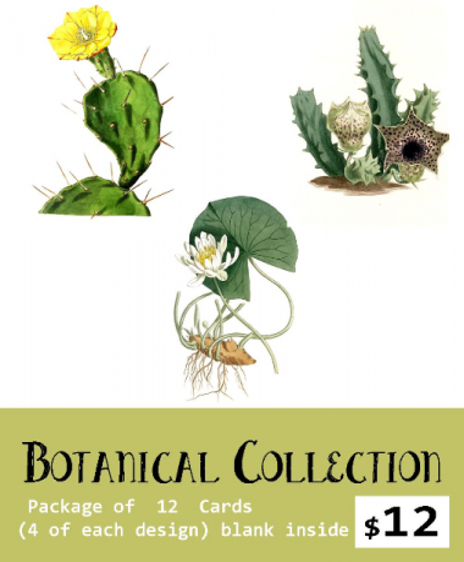 Botanical Card Set  William Curtis Set