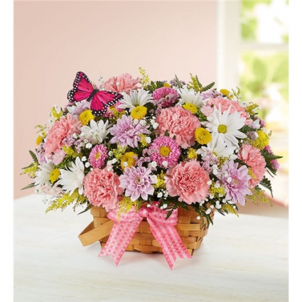 Bouncing Spring Butterfly Fresh Floral Arrangement