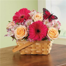 Bountiful Basket™ Arrangement