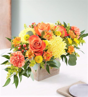 Bountiful Blessings for Thanksgiving Brilliant Autumn Blooms in Reusable Wood Box in Gainesville, FL   PRANGE'S FLORIST