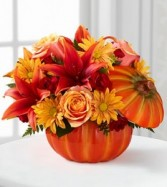 Bountiful Pumpkin Arrangement Fall Festive Flowers