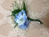 Blue hydrangea Bout