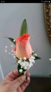 boutonier rosas
