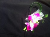 boutonniere orchid