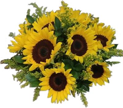 Bowl Full of Sunshine Cut Flowers in Oasis