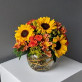 Bowl of Sunshine Arrangement