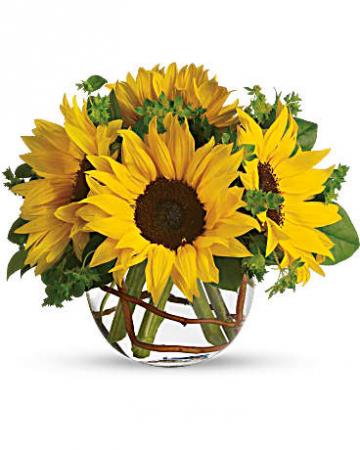 Bowl of Sunshine Vase Arrangement