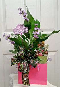 Box of Appreciation 4 Everyday