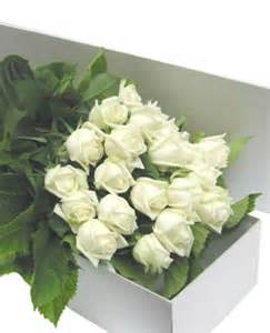 Box of Dozen Roses  Rose Arrangement
