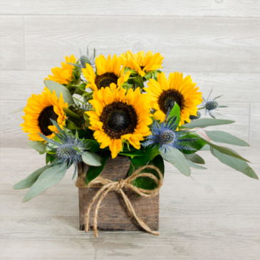 Box of Sunflowers