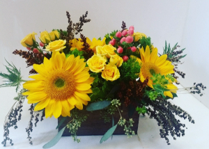 Box of Sunshine oblong box in Northport, NY | Hengstenberg's Florist