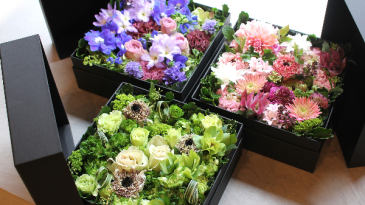 Boxified  Fresh flowers in gift box