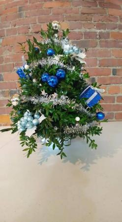 Boxwood 3 Christmas
