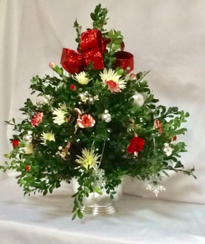 Boxwood Christmas Tree  in Crossville, TN | PEAVINE FLORAL