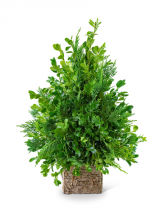 Boxwood Simplicity Tree Flower Arrangement