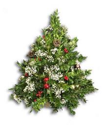 "Boxwood Tree The ""Small Apartment"" Christmas tree"