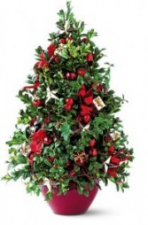 Boxwood Tree Decorated  Christmas Arrangement