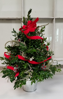 Boxwood Tree Holiday