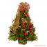 BOXWOOD  TREE  PRE ORDER