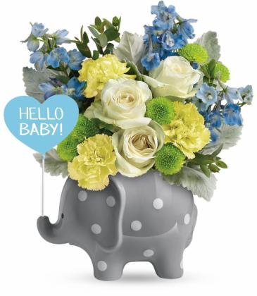 Boy Elephant arrangement