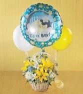 Boys are Best New Baby Boy Arrangement