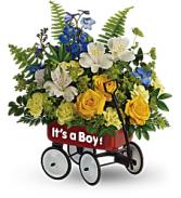 Boy's Red Wagon