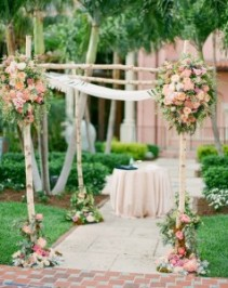 Branches with pink clusters