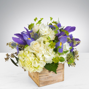 Breath Of Fresh Air  in Newton, MA | BUSY BEE FLORIST