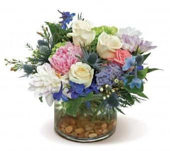 Breathtaking Blossoms MIX GARDEN FLOWERS