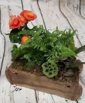 Brick Mould Garden Plants & Terrariums