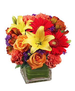 Bright Before Your Eyes Flower Arrangement in Bryan, OH | Farrell's Lawn & Garden and Flowers