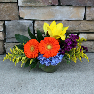 Bright Bubble Bowl Fresh Garden Arrangement