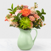 Bright Colors Pitcher