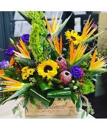 Bright Day Flower Jazz  everyday