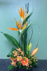 Bright Day Tropical arrangment in Winnipeg, MB | CHARLESWOOD FLORISTS
